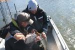 fiske-ekensberg_1058